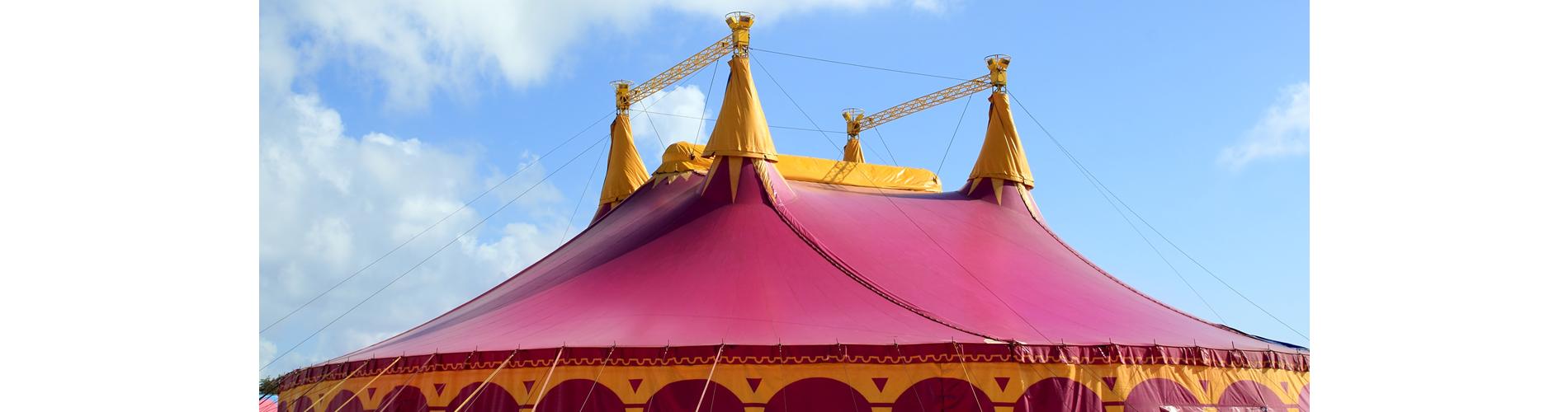 Big Top | Circus Stardust Entertainment